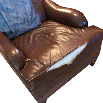 Fix ripped seams leather sofa cushion - Recover and Reupholster Leather