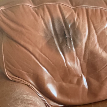 Fix Oil Stained leather sofa cushion - Recover and Reupholster